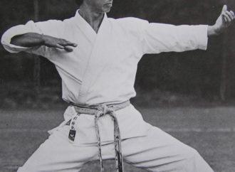 La chiave di tutte le arti marziali è il Maestro