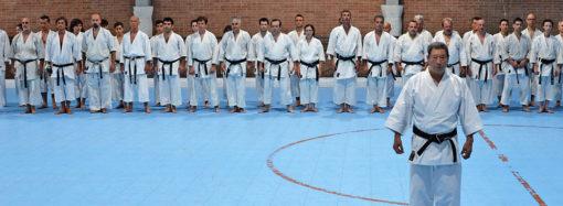 Una lezione di Goshindo col M° Hiroshi Shirai