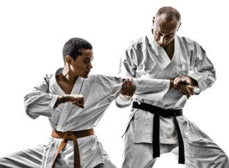 Una proposta per diverse modalità di insegnamento del Karate (parte 2)