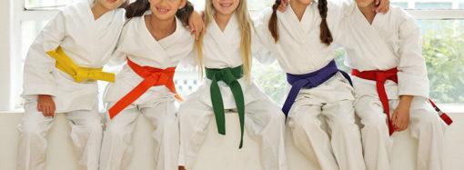 L'approccio sistemico-relazionale nel Karate-do (Parte 1)