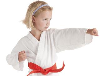 Educare col Karate: cosa significa essere in grado di gestire le emozioni di un giovane praticante (parte 4)