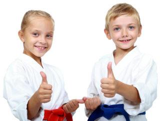 Educare col Karate: il KarateDo da un punto di vista pedagogico e la sua efficacia educativa (parte 5)