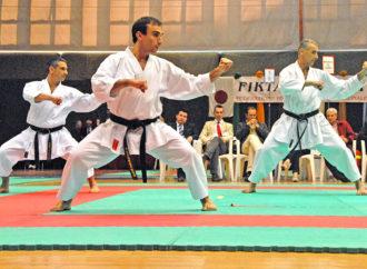 KATA – Psicologia dell'arte e filosofia del Karate