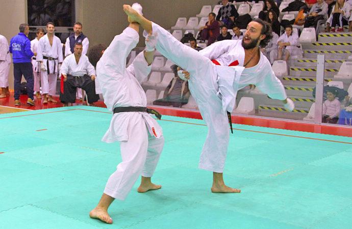 Kumite Shiai