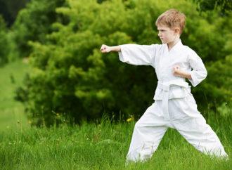 Summer karate camps