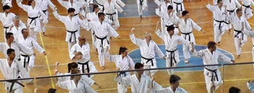 Lo studio dei kata Jitte e Gankaku con il M° Fugazza