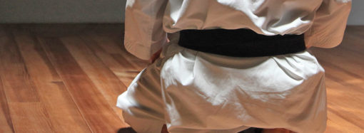Cuore e Karate