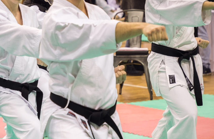 L'azione antiossidante nella pratica del Karate (Parte 1)