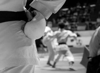 L'azione antiossidante nella pratica del Karate (Parte 3)