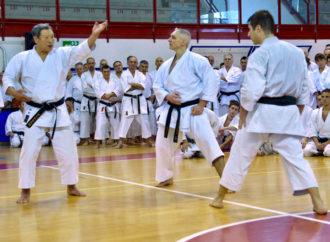 """""""Siamo nani sulle spalle di giganti"""": la prospettiva diacronica nella pratica del karate"""