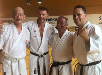Neuhofen an der Krems – A village in Karate fever