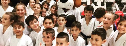 Se 600 piccoli e agguerriti karateka vi sembrano pochi…