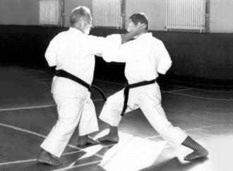 Obiettivo: karate globale