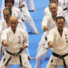 Gli antiquari del karate