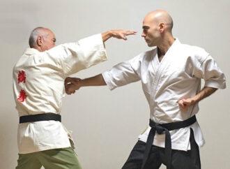 L'arte dell'apparenza nel karate