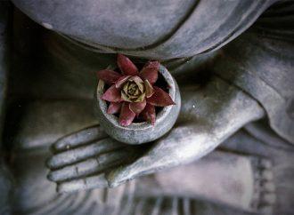 Ridere è illuminazione – La sfida e la resa del maestro zen
